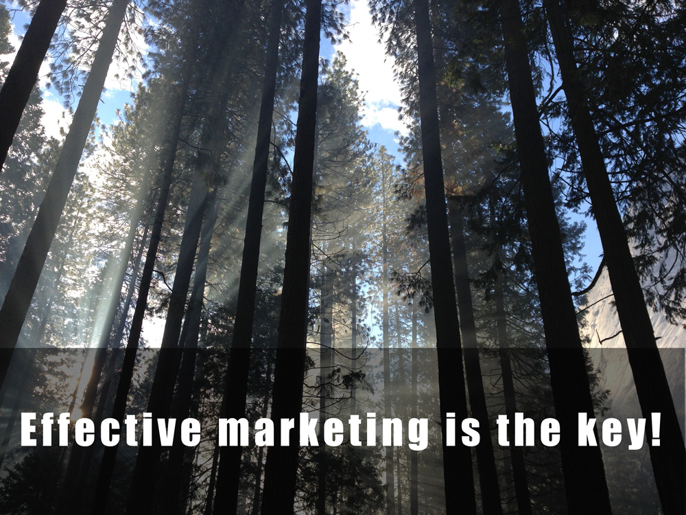 5 BIG Marketing Mistakes (you may want to avoid)